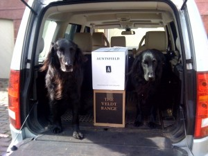Linton Wines Delivery Dogs